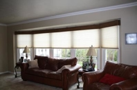 Family Room Pleated Shades