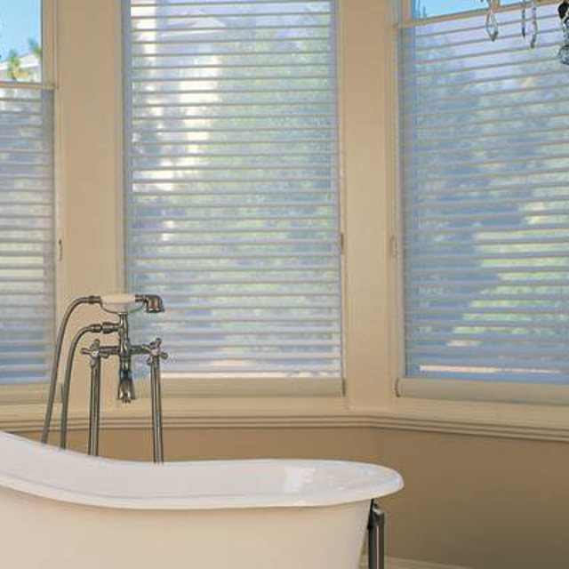 shades behind master tub