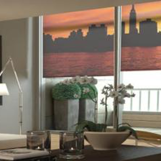 Gotcha Covered custom roller shades that can be printed with pre-designed or even custom images