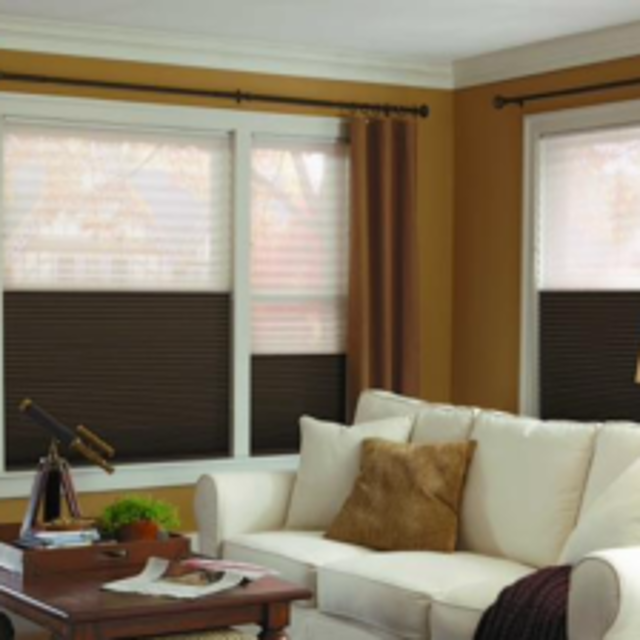 Shades in living room to monitor light and privacy