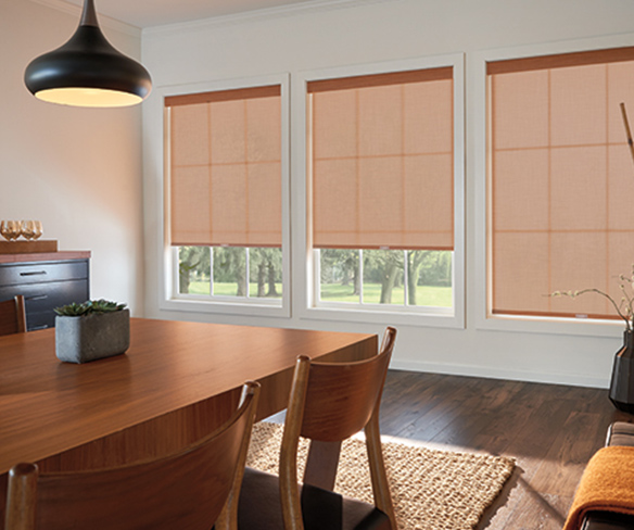 Bedroom roller shades and draperies
