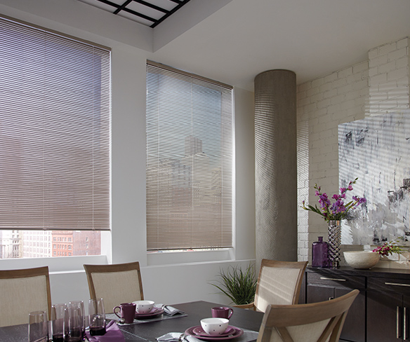 Industrial Urban Dining Room Blinds