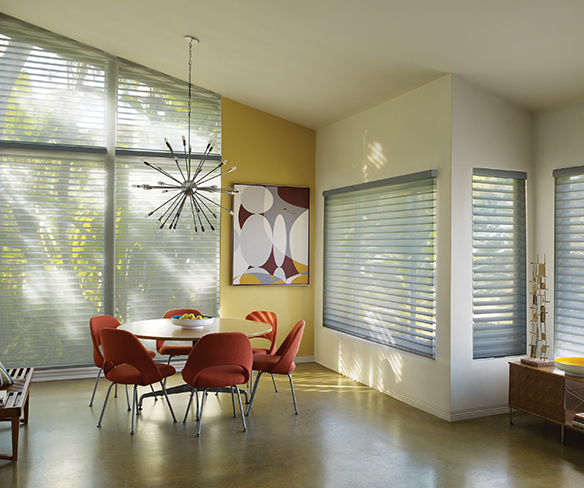 Sunscreens Roller Shades Window Treatments