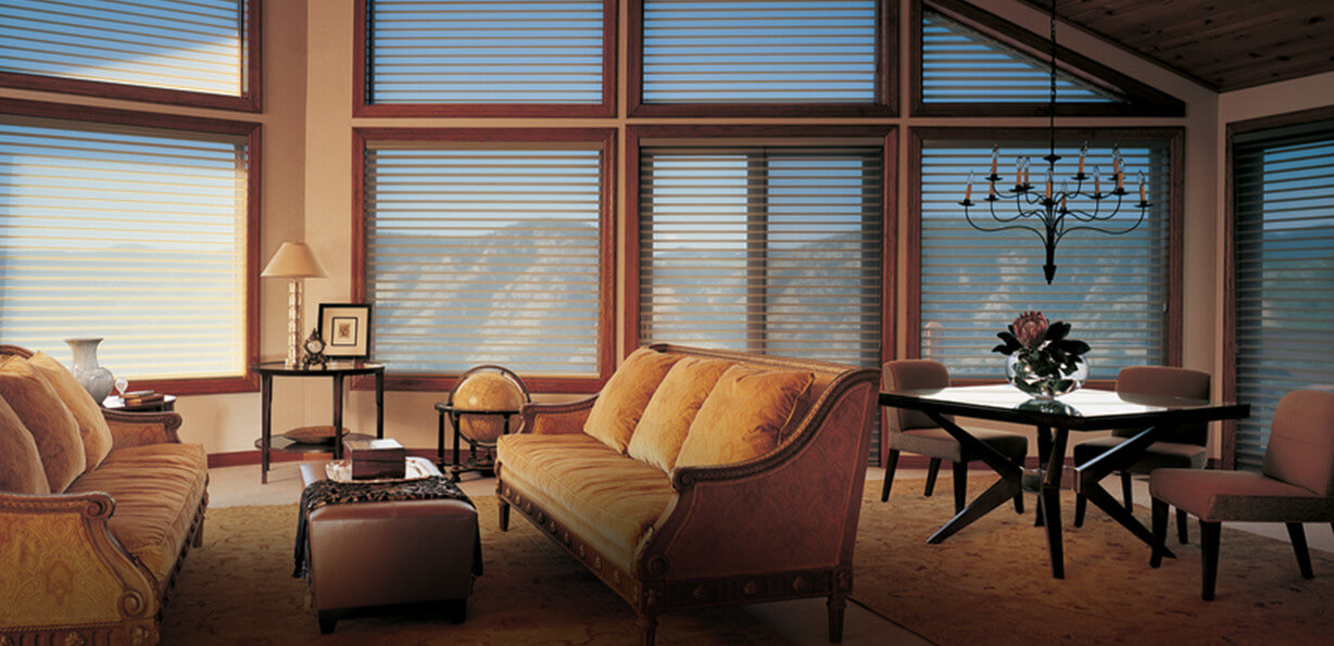 What Are Your Needs Window Treatments Delectable Living Room Window Blinds Design